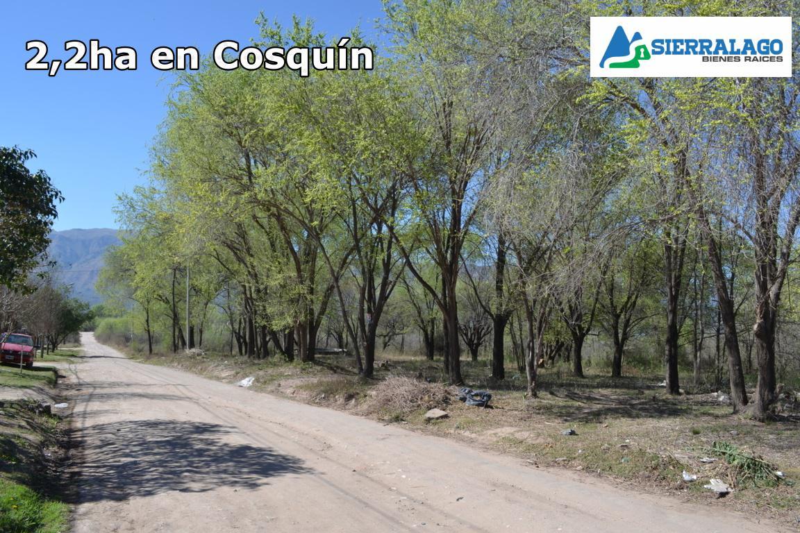 Foto Campo en Venta |  en  Cosquin,  Punilla  2,2ha en el Alto Mieres