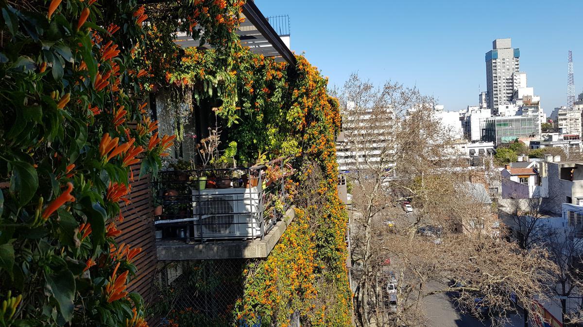 Foto Departamento en Venta en  Colegiales ,  Capital Federal  Maure al 3300