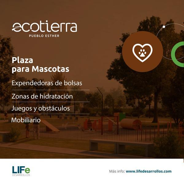 Foto Terreno en Venta en  Pueblo Esther ,  Santa Fe  EcoTierra