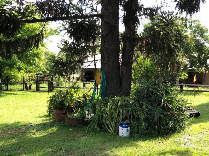 Foto Campo en Venta en  Tristan Suarez,  Ezeiza  Calle s/n Proximo a Colectora de Au. Ezeiza- Cañuelas