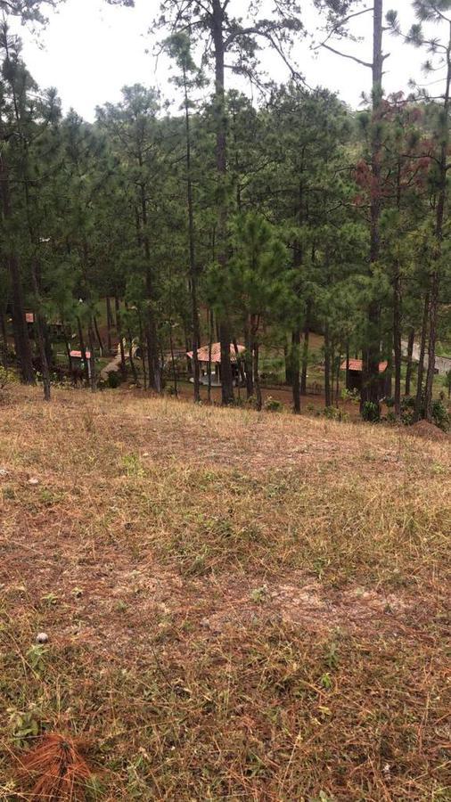 Foto Terreno en Venta en  Altamira,  Distrito Central  Terreno ubicado en Altamira, Las Tres Rosas