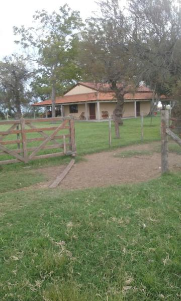 Foto Campo en Venta en  Las Flores ,  Interior Buenos Aires  Las Flores, a 15km ruta N°3