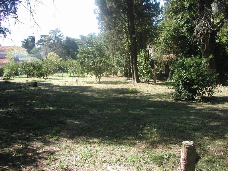 Foto Terreno en Venta en  San Ignacio,  San Miguel  Pichcincha al 1000