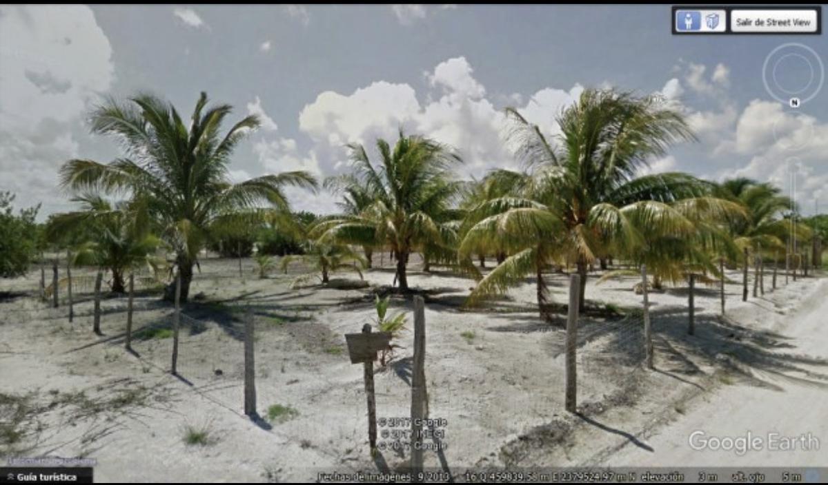 Foto Terreno en Venta en  Quintana Roo ,  Quintana Roo  Holbox