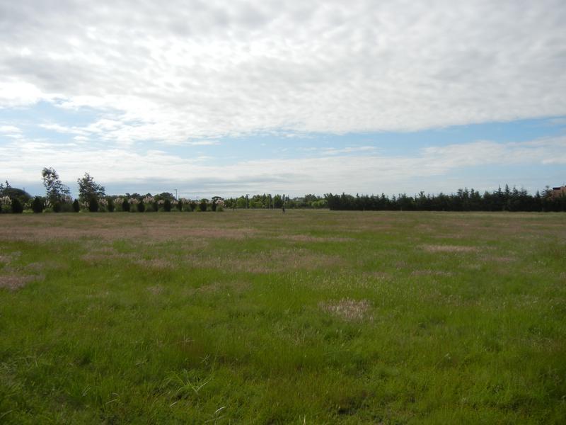 Foto Terreno en Venta en  Campos del Virrey,  Cordoba  Terrenazo en Venta  -Campo del Virrey
