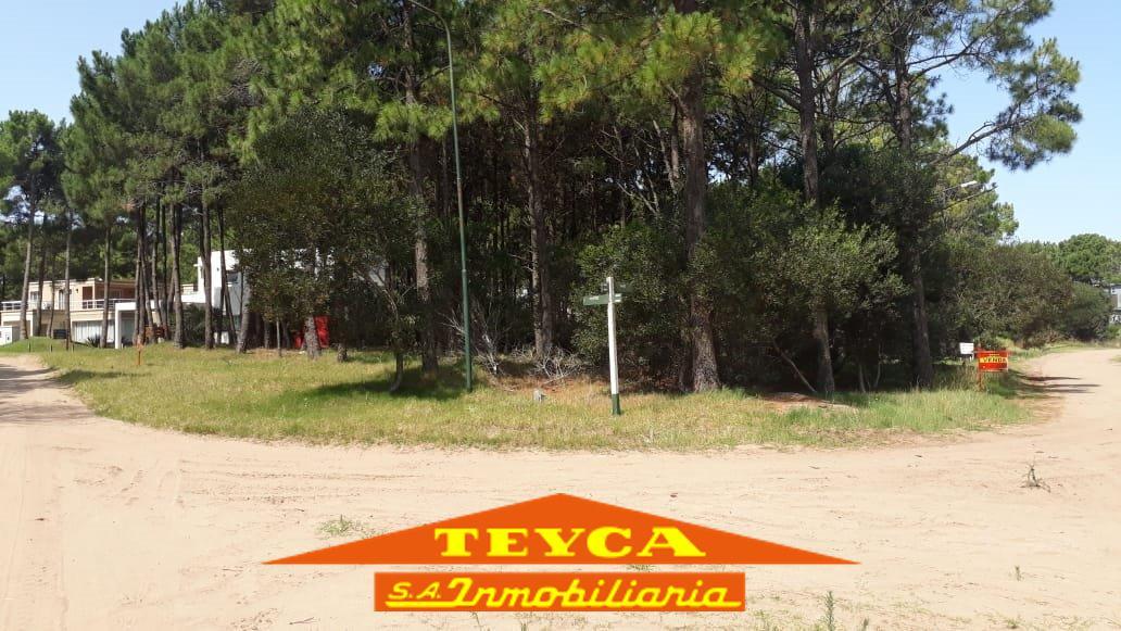 Foto Terreno en Venta en  Norte Playa,  Pinamar  Selene esq. Polifemo