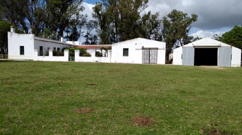 Foto Campo en Venta en  Velázquez ,  Rocha  Velázquez