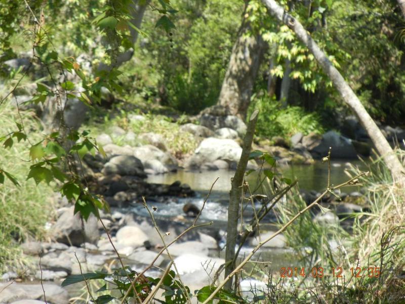 Foto Terreno en Venta en  Pueblo San Marcos de Leon,  Coatepec  LOS PUENTES
