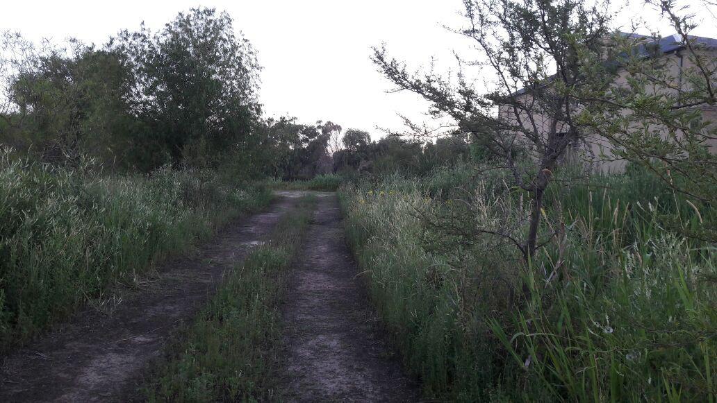 Foto Terreno en Venta en  Villa Paranacito,  Islas Del Ibicuy  Av. Entre Rios - Villa Paranacito