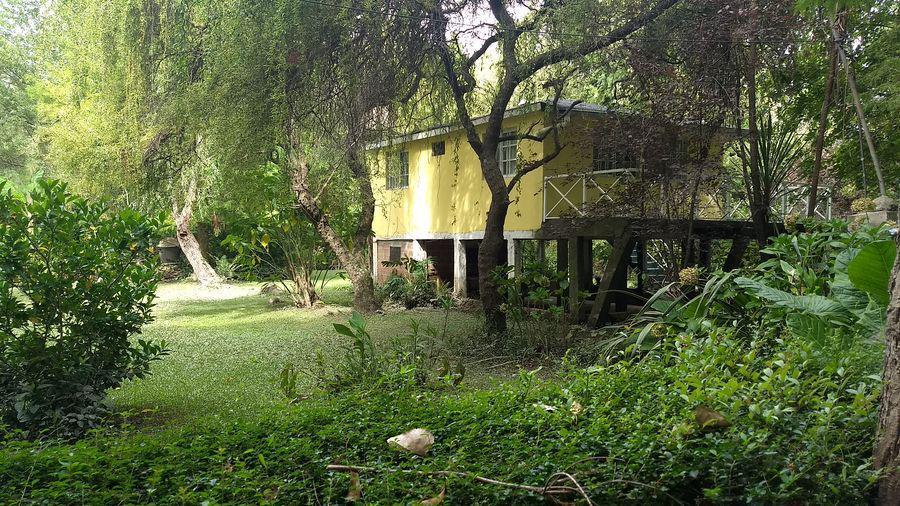 Foto Casa en Venta en  Sarmiento,  Zona Delta Tigre  Canal 1