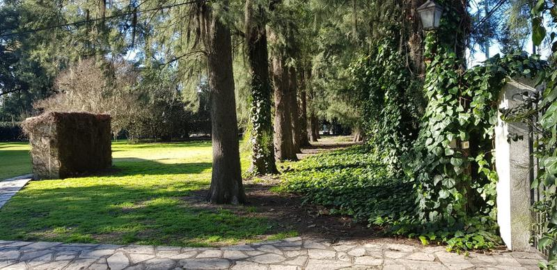 Foto Quinta en Venta en  Monte Grande,  Esteban Echeverria  12 de Octubre y Constanzo