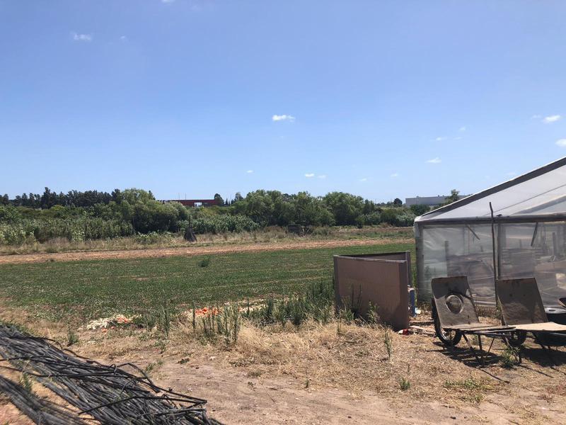 Foto Chacra en Venta en  San José de Carrasco ,  Canelones  3 hectáreas en San José de Carrasco Norte