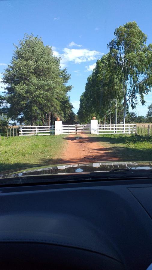 Foto Campo en Venta en  Paraguarí ,  Paraguarí  Yaguaron, Paraguari.