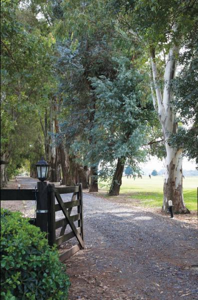 Foto Terreno en Venta en  El Campo - Fincas Exclusivas Cardales,  Countries/B.Cerrado (Campana)  ruta 4 km 3.5