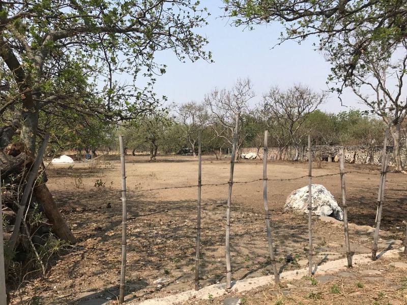 Foto Terreno en Venta en  Pueblo Zacualpan de Amilpas,  Zacualpan  Terreno en Venta