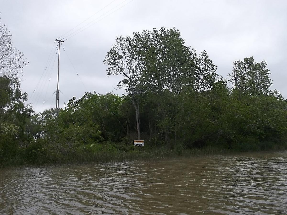 Foto Quinta en Venta en  Toro,  Zona Delta Tigre  Toro 157 ha