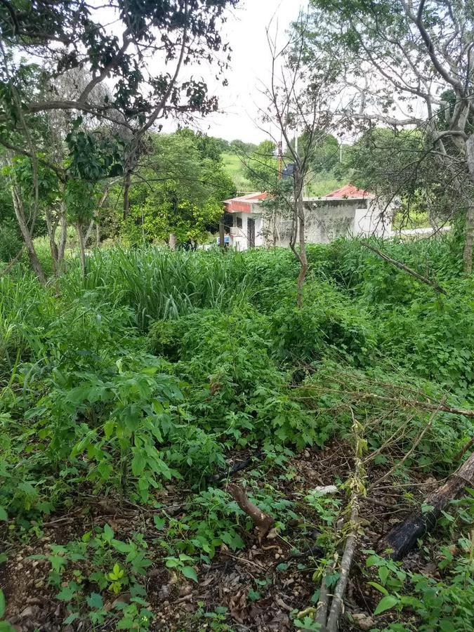 Foto Terreno en Venta en  Ejido San Lorenzo,  Campeche  TERRENO EN SEGUNDA FILA A LA PLAYA