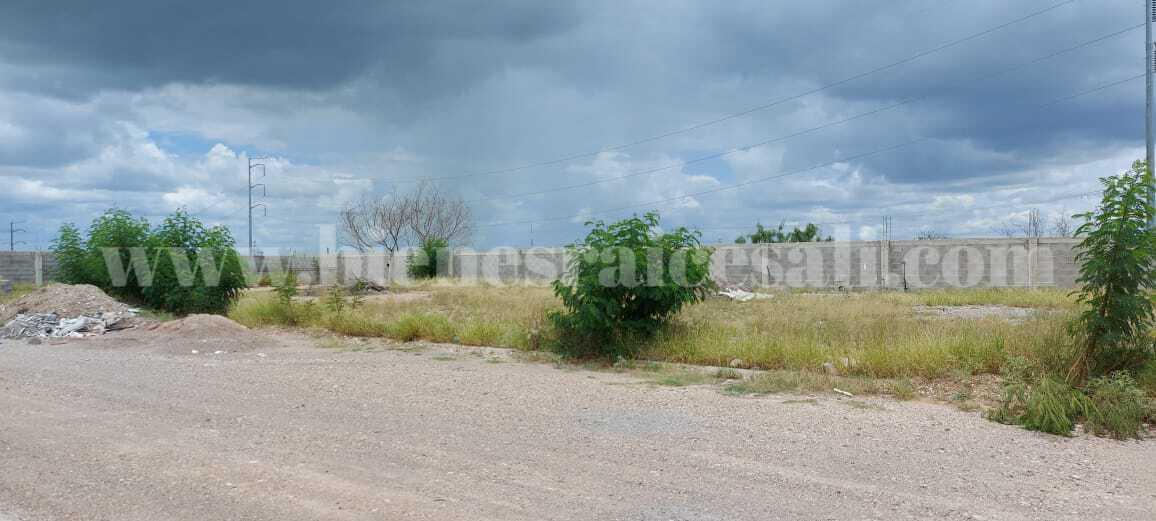 Foto Terreno en Venta en  Piedras Negras ,  Coahuila  Terreno en Venta, atrás de Aurrerá, por Real del Norte