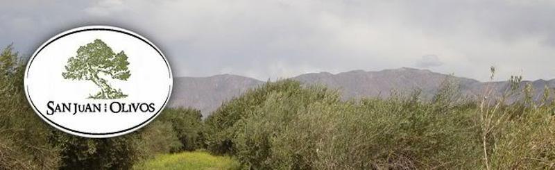 Foto Terreno en Venta en  Rawson ,  San Juan  R. Calibar al sur de Rep. del libano