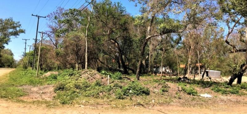 Foto Terreno en Venta en  San Bernardino ,  Cordillera  San Bernardino