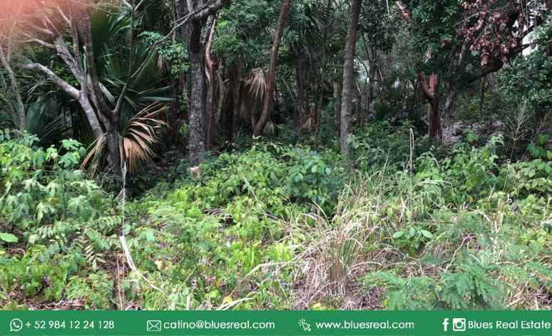 Picture Land in Sale in  Playa del Carmen,  Solidaridad  FOR SALE land in the fractionation El Tigrillo (in front of Playacar) and near Centro Maya | Code 696