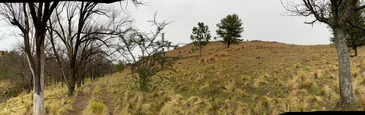Foto Campo en Venta en  Potrero De Garay,  Santa Maria  Campo Potrero de Garay