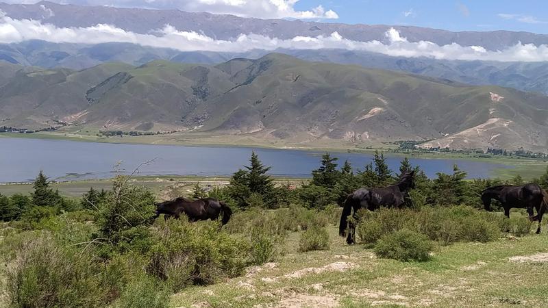 Foto Terreno en Venta en  Tafi Del Valle ,  Tucumán  AYRES DEL LAGO TAFI DEL VALLE LOTE 1400m2