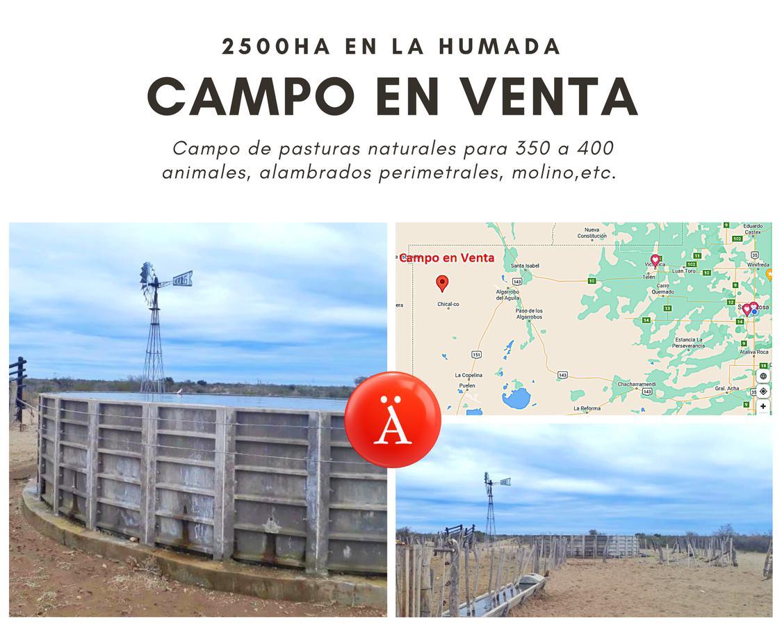 Foto Campo en Venta en  La Humada,  Chical Co  La Humada