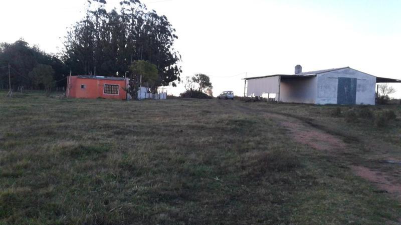 Foto Chacra en Venta en  Los Ceibos,  Maldonado  Camino de Los Ceibos y de Las Corujas.
