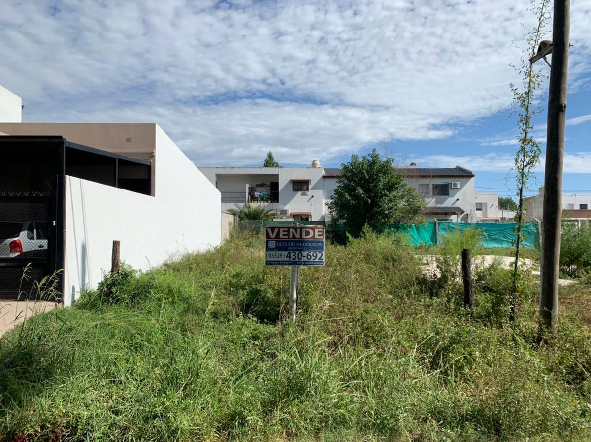 Foto Terreno en Venta en  San Pedro,  San Pedro  Dipietri 1000