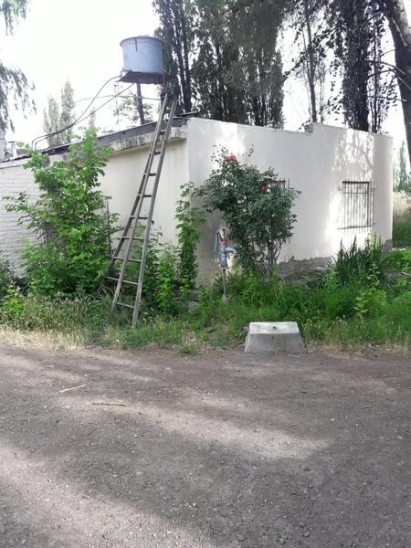 Foto Chacra en Venta en  Villa Regina,  General Roca  CHACRA 6HA.-V.REGINA