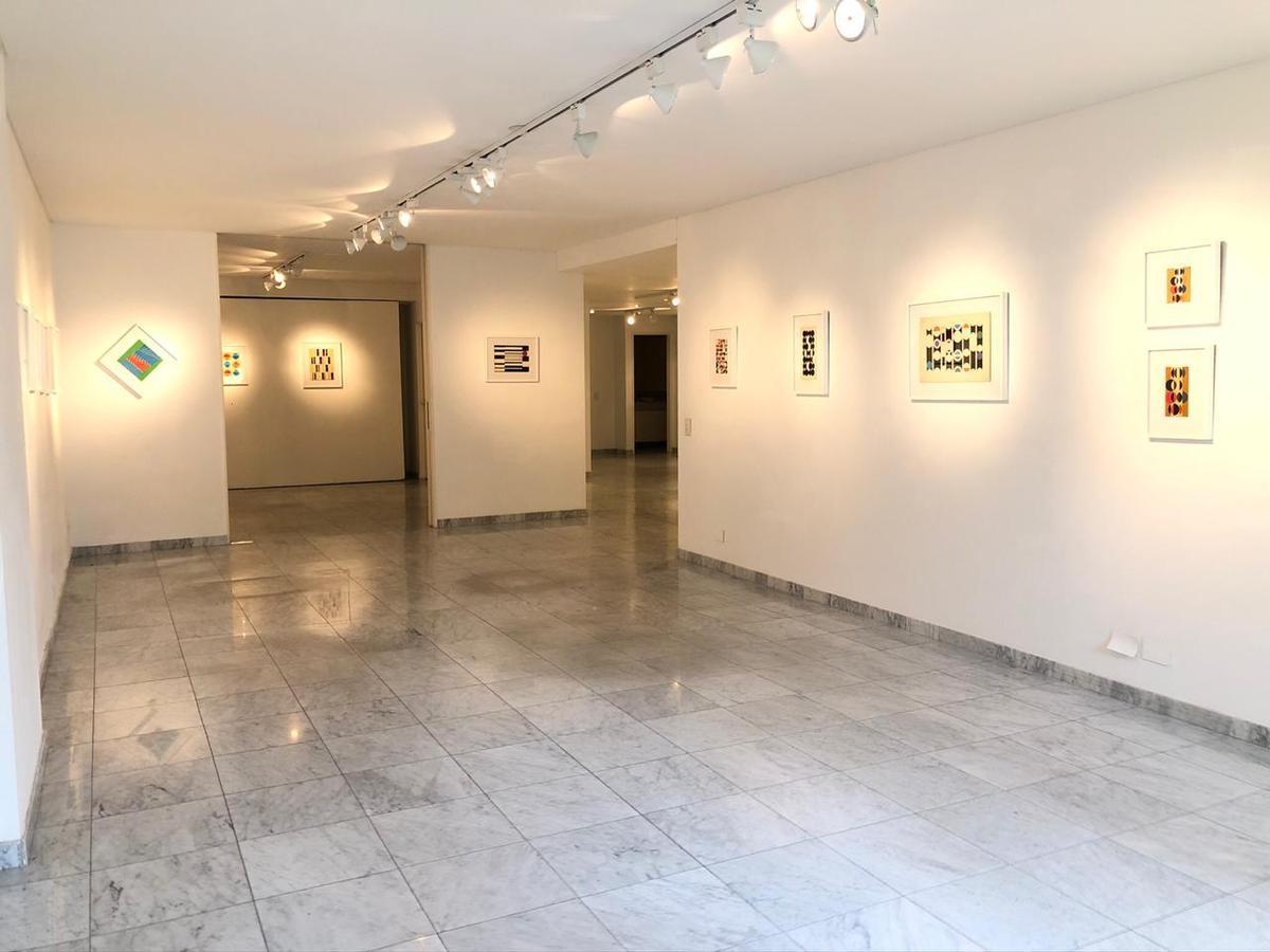 Foto Departamento en Alquiler en  Palermo Chico,  Palermo  Av. Figueroa Alcorta al 3000