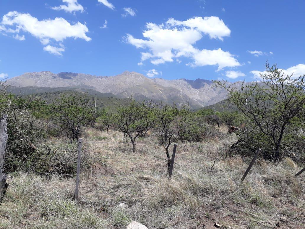 Foto Terreno en Venta en  Los Hornillos,  San Javier  VENDO LOTEO EN LOS HORNILLOS EXCELENTE VISTA, SERVICIOS, ESCRITURA