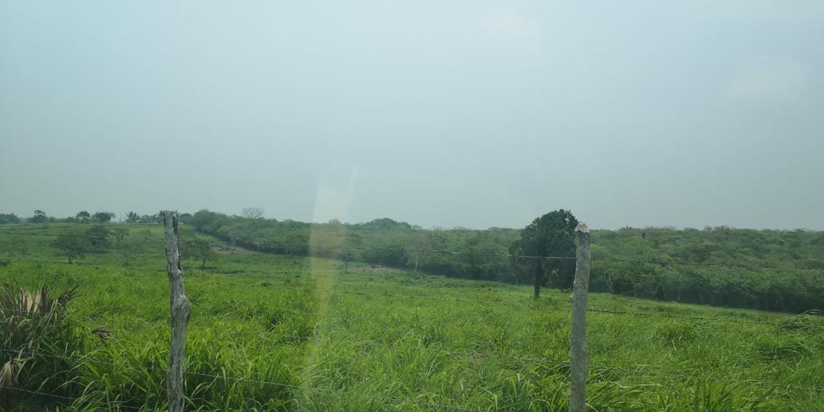 Foto Terreno en Venta en  Tampico Alto ,  Veracruz  Tampico Alto.