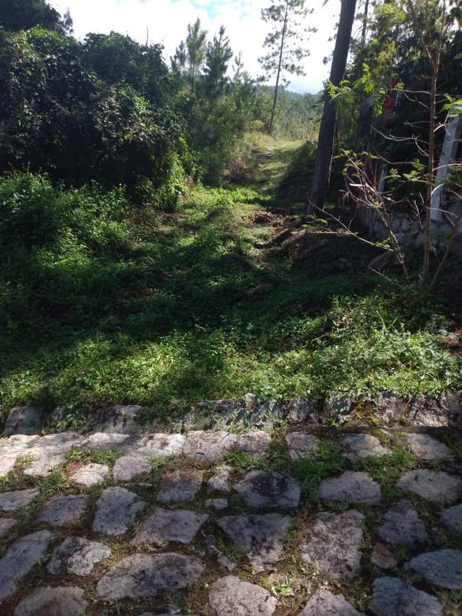 Foto Terreno en Venta en  Miralago,  Tegucigalpa  Amplio Terreno en Miralago, Tegucigalpa