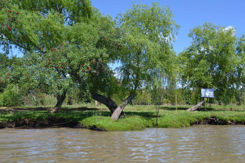 Foto Terreno en Venta en  Urion,  Zona Delta Tigre  Río Urion Varios