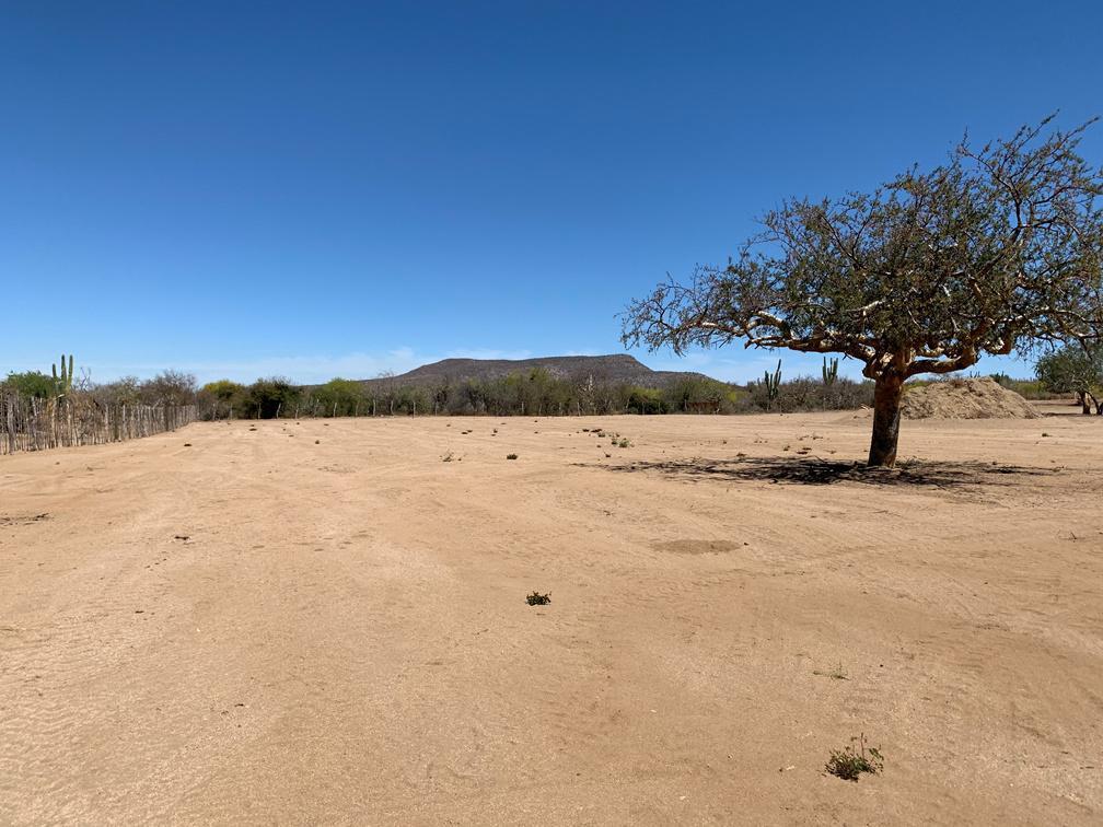 Foto Terreno en Venta en  La Paz ,  Baja California Sur  TERRENO DIVINA PROVIDENCIA 0110 - CALLE CINCO FRACC. LA DIVINA PROVIDENCIA