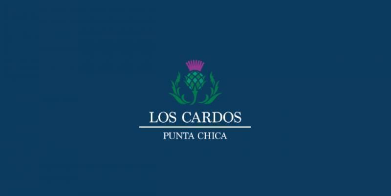 Foto Terreno en Venta en  Countries/B.Cerrado (San Isidro),  San Isidro  Los cardos L11