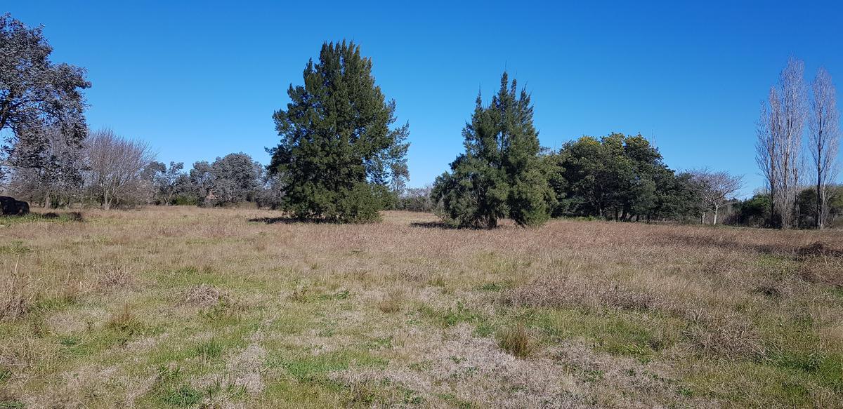 Foto Campo en Venta en  Arroyo De La Cruz,  Exaltacion De La Cruz  Entre Capilla del Señor y Parada Robles