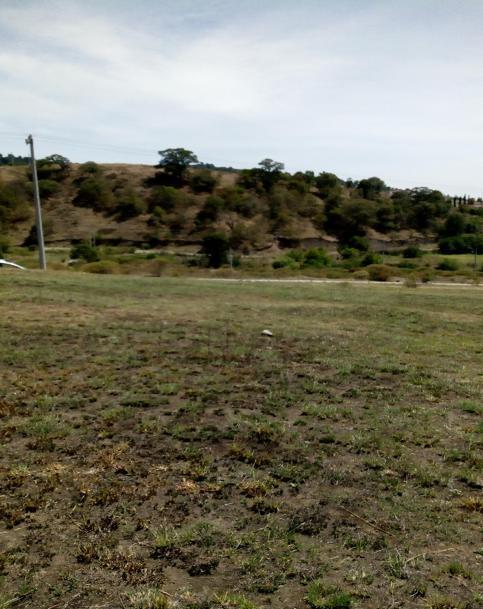 Foto Terreno en Venta en  La Purísima,  Ixtlahuaca  Hacienda la Purisima