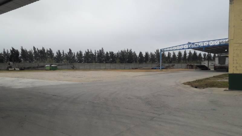 Foto Depósito en Venta en  Zarate ,  G.B.A. Zona Norte  camino costa brava 1