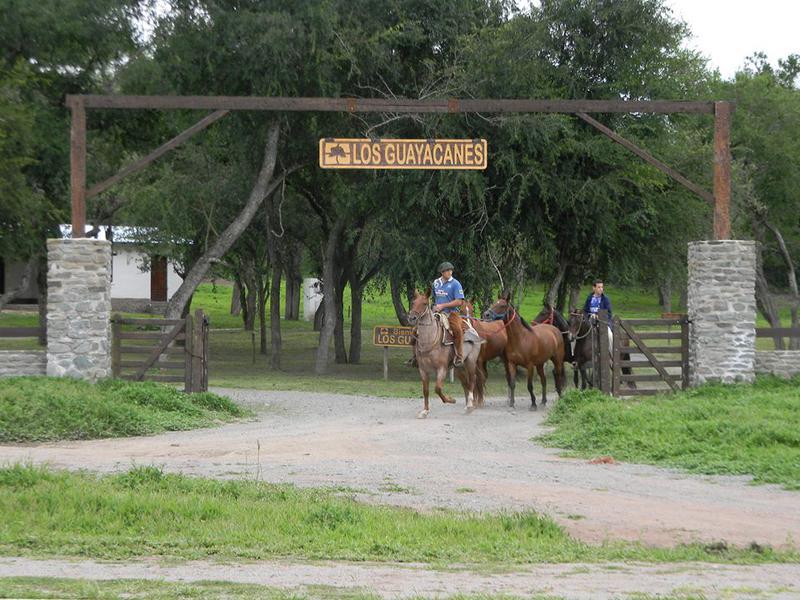 Foto Terreno en Venta en  Tapia,  Trancas  LOS GUAYACANES