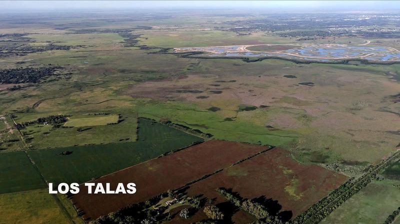 Los Talas - Campo 1000 has en Venta en Los Cardales