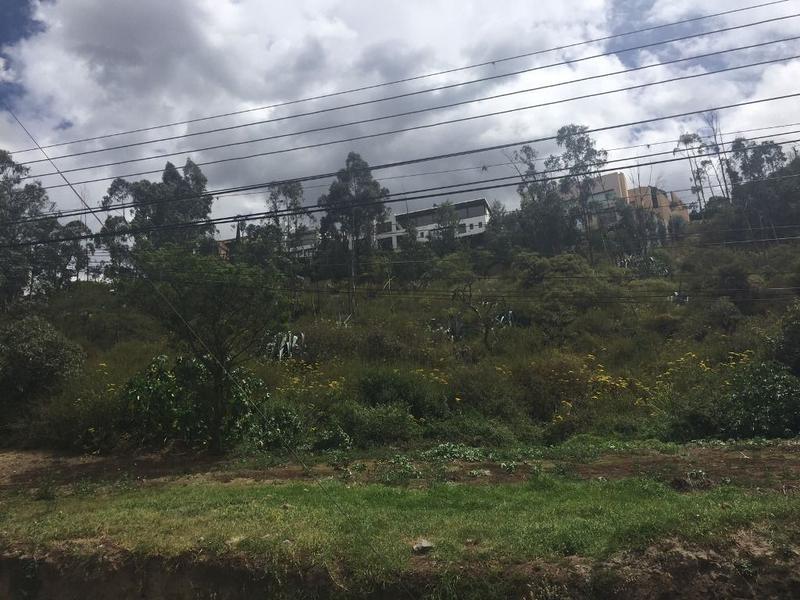 Foto Terreno en Venta en  Cumbayá,  Quito  2.500 m2, sector Pillagua, ideal constructores