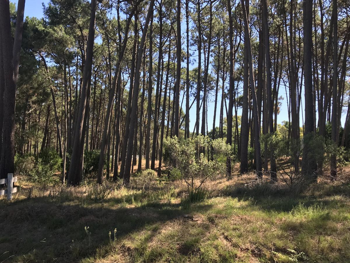 Foto Terreno en Venta en  La Barra ,  Maldonado  Barra Verde LOTE MUY BUENO 1.681 Mts2