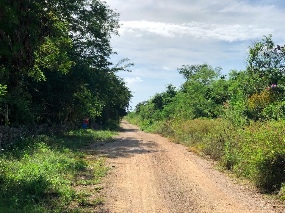Foto Terreno en Venta en  Pueblo Conkal,  Conkal          terreno en conkal, propiedad privada,  ideal para lotificar  , junto a balche y maculi
