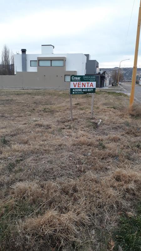 Foto Terreno en Venta en  Villa Regina,  General Roca  TERRENO LOTEO GELABERT