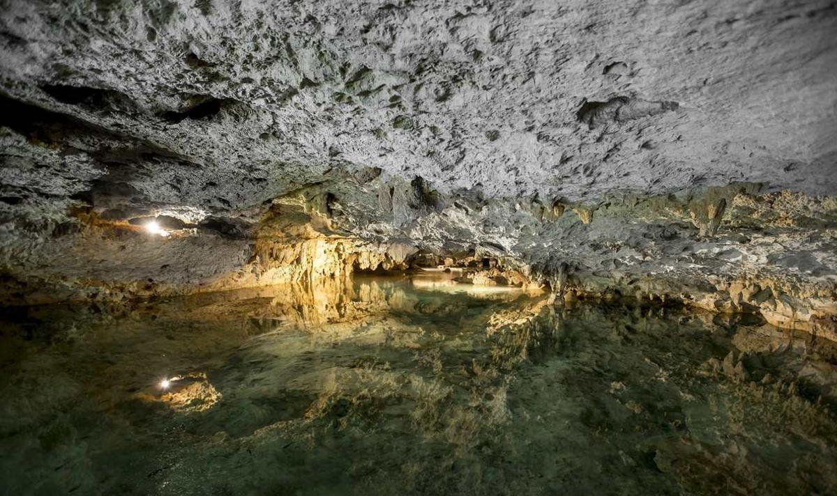 Foto Terreno en Venta en  Quintana Roo ,  Quintana Roo  Gran Oportunidad Cenote en la Riviera Maya