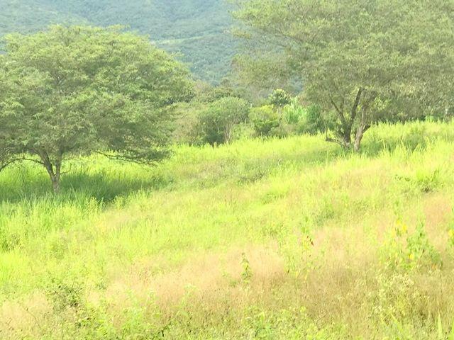 Foto Terreno en Venta en  Periferia,  Cuenca  Yunguilla