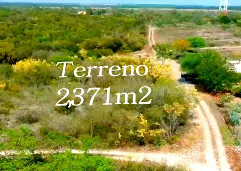 Foto Terreno en Venta en  Montemorelos ,  Nuevo León  VENTA DE TERRENO EN CARRETERA NACIONAL EL FRAILE